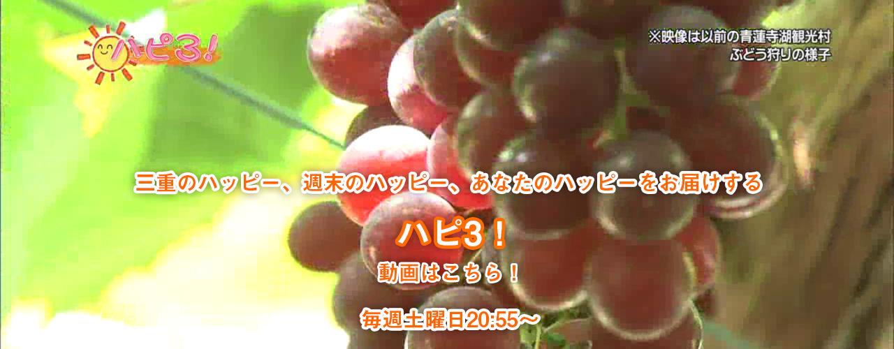 ハピ3!動画